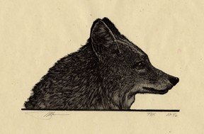 "Barry Moser, ""Fox"", engraving, 2010"