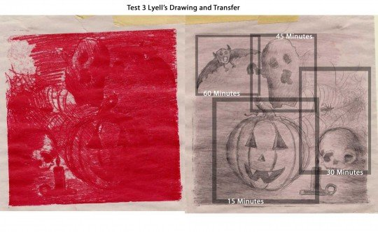 Lyell's drawing and transfer
