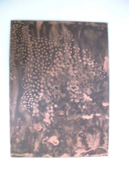 Maya's inked plate