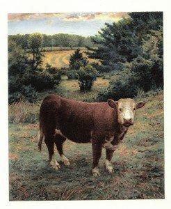 "Scott Prior, ""Cow"", digital print with photopolymer intaglio"