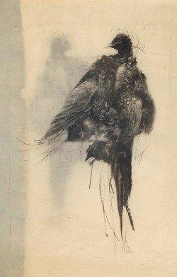pheasant pronto