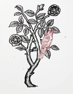 workshop print by Tatiana Klacsmann