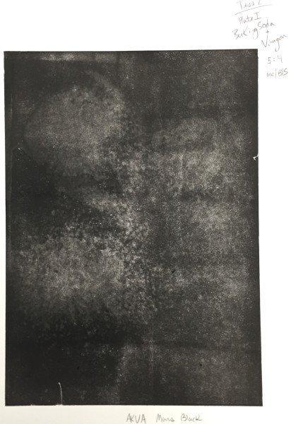 Test 2, Plate 1 print