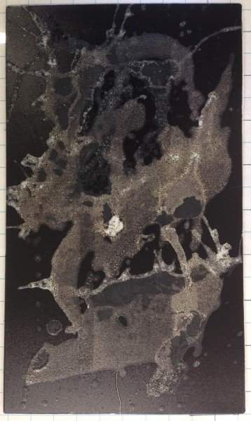Dried plate prior to printing
