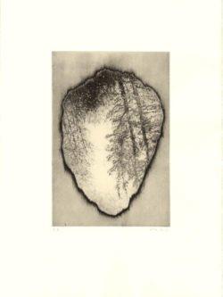 Anita S. Hunt, Relic